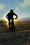 Silhouette sport man cycling downhill riding cross country mount Stock Image