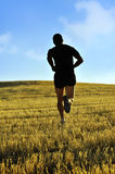 Silhouette sport man running off road in countryside on yellow grass field at sunset Stock Image