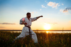 Silhouette of sportive man training karate in field at sunrise. Stock Image