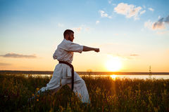 Silhouette of sportive man training karate in field at sunrise. Royalty Free Stock Image