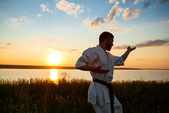 Silhouette of sportive man training karate in field at sunrise. Royalty Free Stock Photos