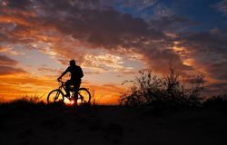 Silhouette of sports person cycling on the meadow royalty free stock images