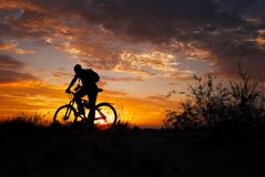 Silhouette of sports person cycling on the meadow. On the beautiful sunset. Young man with camera and bicycle stock photos