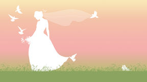 Silhouette of a spring bride. Silhouette of a young beautiful bride with a bouquet of flowers and a long veil walking on the grass and surrounded by pigeons and Royalty Free Stock Photo