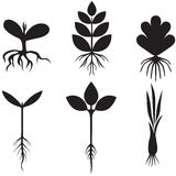 Silhouette sprout set Royalty Free Stock Photos
