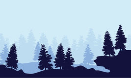 Silhouette spruce forest scenery collection. Vector illustration Royalty Free Stock Photo