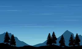 Silhouette of spruce with mountain landscape Stock Photos