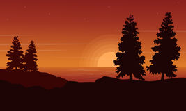 Silhouette of spruce on riverbank landscape Royalty Free Stock Photos