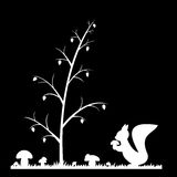 Silhouette of the squirrel in the grass. Royalty Free Stock Image