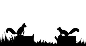Silhouette of a squirrel on a tree stump. Stock Photos