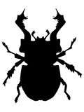 Silhouette of stag beetle Stock Photo