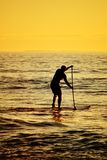 Silhouette of Stand up paddler at sunset, paddle board sport. Silhouette of a man on stand up paddle board Royalty Free Stock Photography