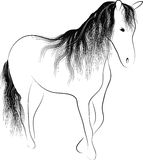 Silhouette standing horse. With a mane of wavy Vector Illustration