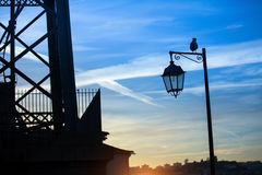 Silhouette of street lamp and bird Royalty Free Stock Photo