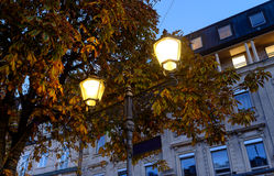 Silhouette of a street lamp contrasting light on the background of bright yellow leaves. Autumn day. Stock Photo