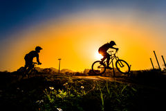 Silhouette Of Stunt Bmx Riders Royalty Free Stock Photography