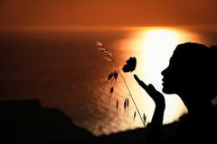 Silhouette, Sunrise, Backlighting, Sunset stock photos
