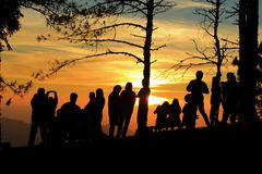 Silhouette sunset Stock Images