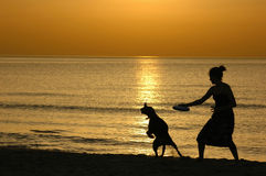 Silhouette at sunset. Playing frisbee Royalty Free Stock Photography
