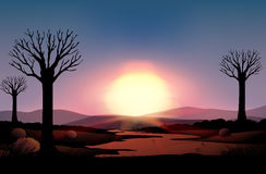Silhouette sunset Royalty Free Stock Image
