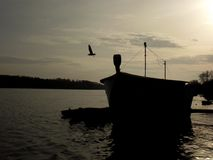 Silhouette at sunset. Silhouette of a fishingboat and a seagull at sunset, Tolna, Hungary royalty free stock photos