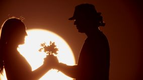 A silhouette in the sunsets. couple stock footage
