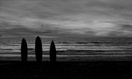 Silhouette of Surfboard Royalty Free Stock Image