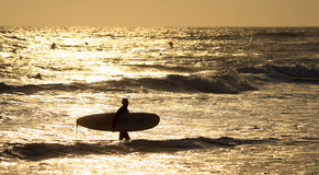 Silhouette of a surfer. At sunset Royalty Free Stock Photo