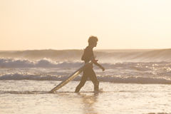 Silhouette of surfer on beach with surfboard. Male surfer on the beach with the surfboard in sunset. Vertical composition Stock Image