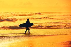 Silhouette of the surfer girl Royalty Free Stock Photos