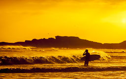 Silhouette of surfer at sunset Stock Photography