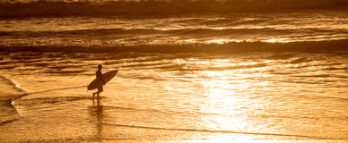 Silhouette of a surfer at sunset on the atlantic ocean in Lacanau France, panorama and surf. Concept Stock Images