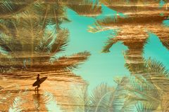 Silhouette of a surfer at sunset, double exposure photography stock photography