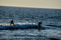 Silhouette Surfer at Sunset. In Tenerife Canary Island Spain Royalty Free Stock Photography