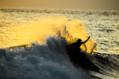 Silhouette Surfer at Sunset Stock Image