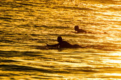 Silhouette Surfer at Sunset. In Tenerife Canary Island Spain Royalty Free Stock Photos