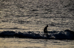 Silhouette Surfer at Sunset. In Tenerife Canary Island Spain Stock Image