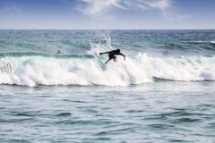 Silhouette of a surfer on waves on famous beach in Sri Lanka. Stock Image