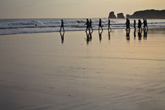 Silhouette of surfers heating up going to swim in morning sunrise Stock Image