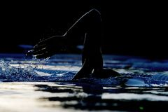 Silhouette swimmer 01 Royalty Free Stock Image