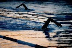 Silhouette swimmer 05 Stock Photo