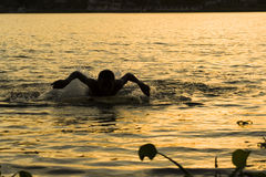 Silhouette Swimmer Royalty Free Stock Photo