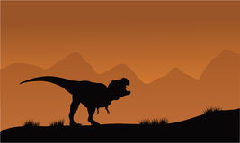 Silhouette of T-Rex in the fields Stock Photos