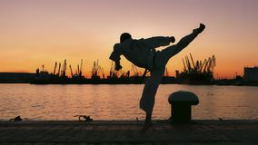 Silhouette of a taekwondo fighter on a sunset over sea. Martial artist training alone on the sea pier, practising his moves on sunset and port cranes background royalty free stock image