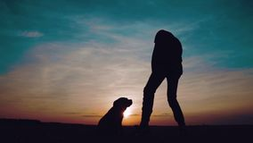 Silhouette of a teenager dancing rap at sunset with a dog.
