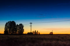 Silhouette Of The Telephone Line Royalty Free Stock Photography