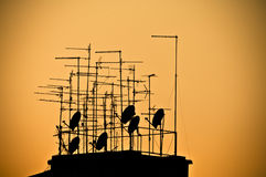 Silhouette of television antennas. On a rooftop, over orange background Royalty Free Stock Photos