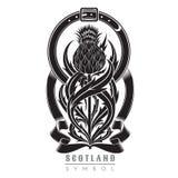 Silhouette of thistle with leaf pattern and belt frame. Symbol of Scotland design element black stock illustration