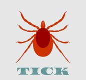 Silhouette of Tick parasite. Sketch of Mite. Isolated on white background. Royalty Free Stock Photo