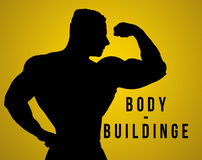 The silhouette of torso of male body builder Stock Photos